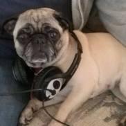 Podcast Co-Host Daisy Marxxx-Loomis.